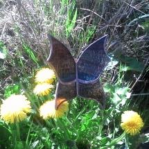 Papillon 1 - djyako.fr